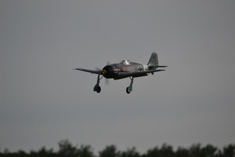 FW-190 FMS 1400mm, 2ème chance... Dsc_0217