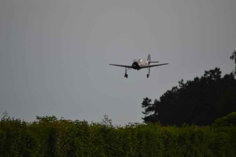 FW-190 FMS 1400mm, 2ème chance... Dsc_0310
