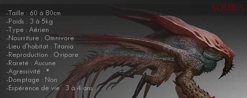 Bestiaire Aquila10