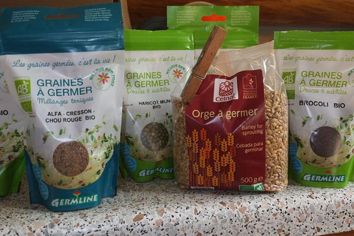 Les graines germées pour les nuls Graine17