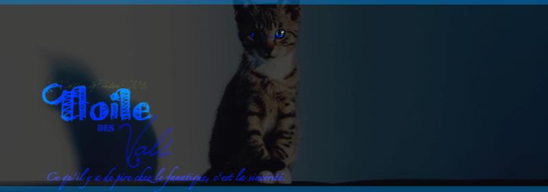 Une solitaire,fille d'un meurtrier Etoile11