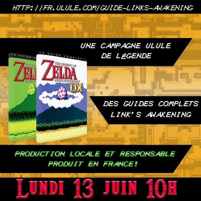 Guide Zelda Awakening  ( Ulule Dr Lakav )  Ckqccx10