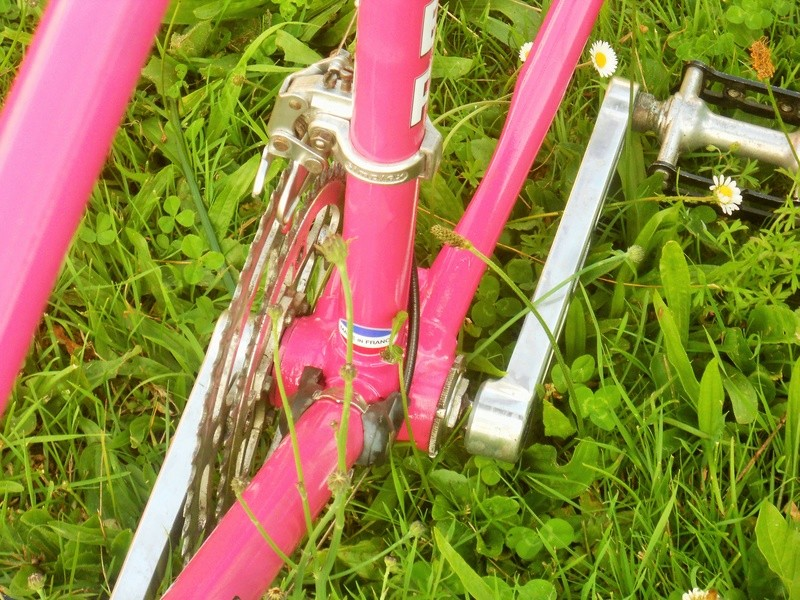 MERCIER rose 531 1977 Dscn8473