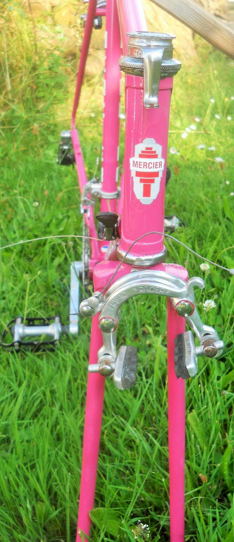 MERCIER rose 531 1977 Dscn8474