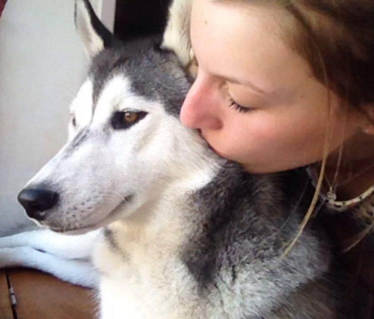 Laska-Moon, ma folie-douce (husky sibérien) - Page 4 Love10