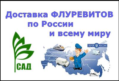 ДОСТАВКА ФЛУРЕВИТОВ по России и всему миру в кратчайшие сроки 42785710