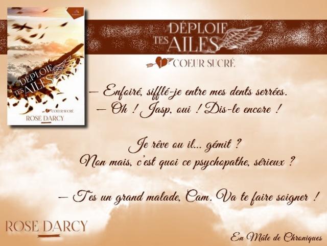 Déploie tes ailes - Tome 1 : Coeur sucré de Rose Darcy Dyploi10