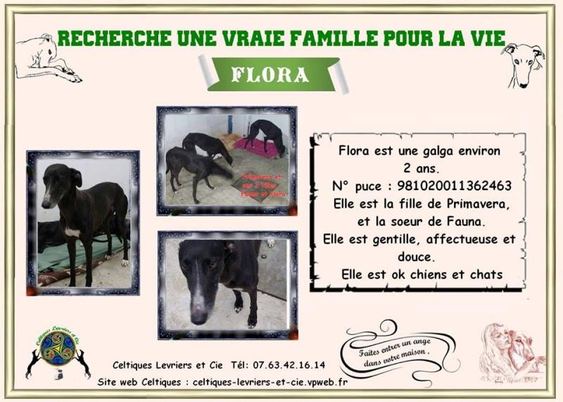 Flora - 2 ans (29) 13444410