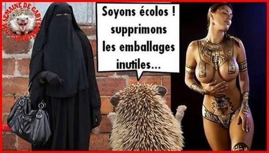 Météo en france  - Page 6 Humour79