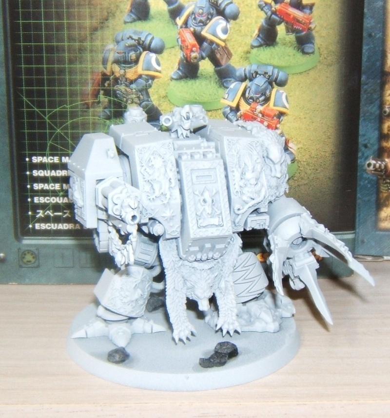 Warhammer et moi! Dscf7111