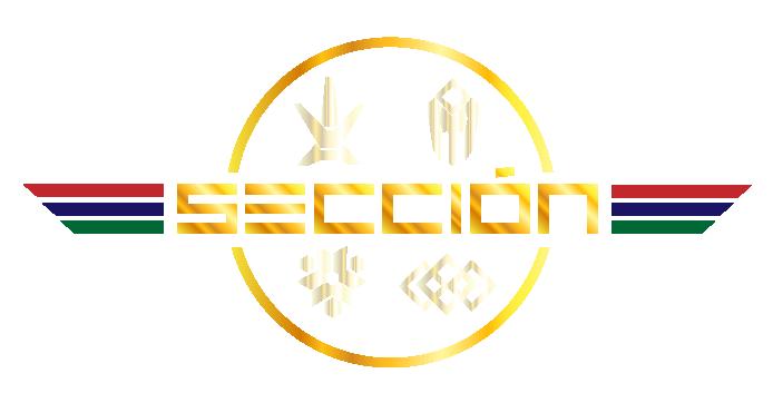 ALERTA SECCIÓN 1325t98 (SÓLO MIEMBROS DE SECCIÓN & BECARIOS) Logo-014