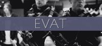 Dado: siervos de Avalloc Evat10