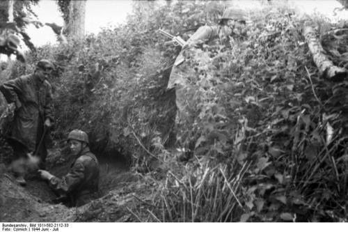 Bataille dans le Bocage Normand - techniques et tactiques 61ff0112