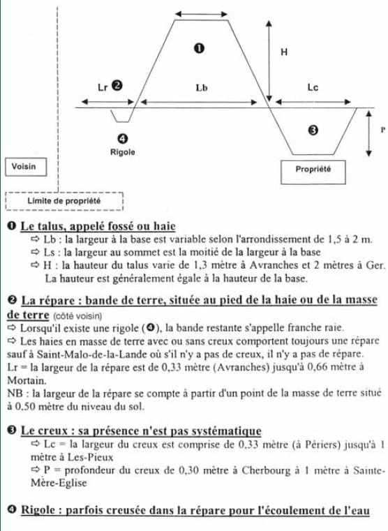 Bataille dans le Bocage Normand - techniques et tactiques Bocage14