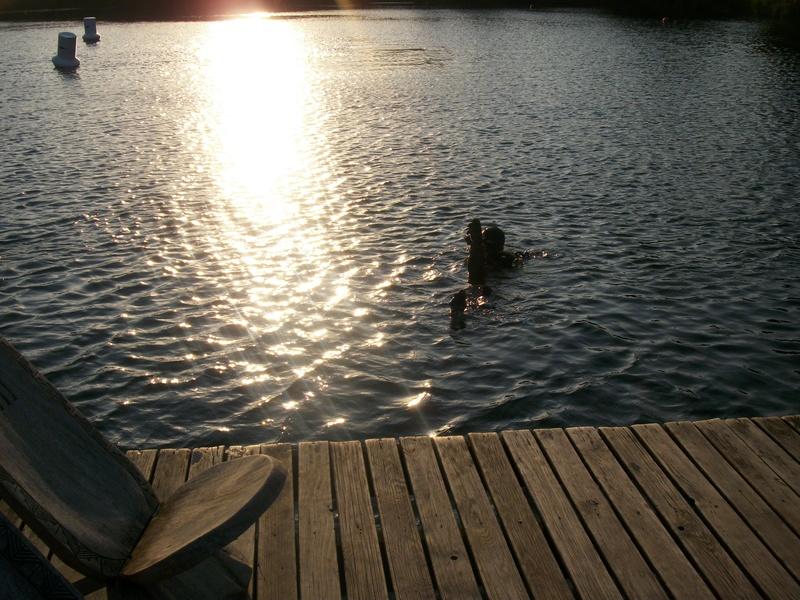 Plongée à Roussay : mercredi 20 juillet Imgp5014