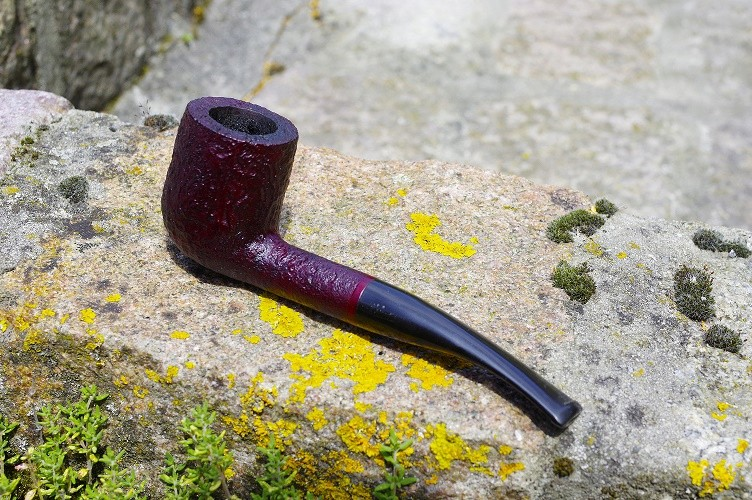 Les Pipes d'Arnaud _img1117
