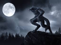 Loups-garous et loups  Loup-g13