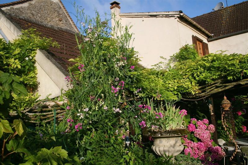 mon jardin à Avernes. Img_0011