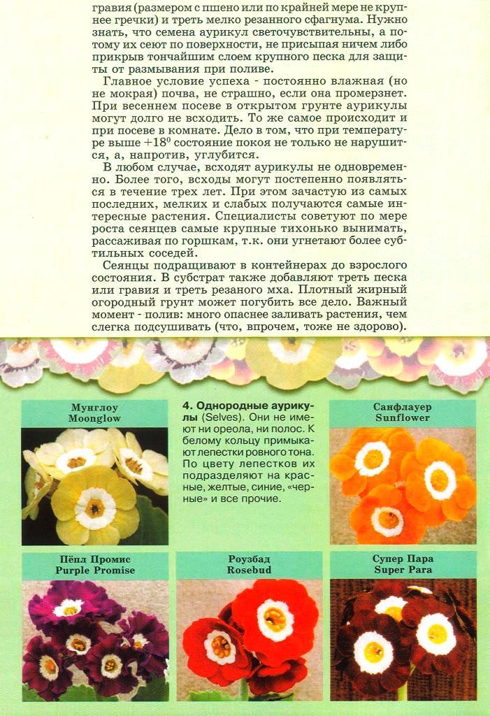 статьи о растениях из  газет и журналов - Страница 2 1610