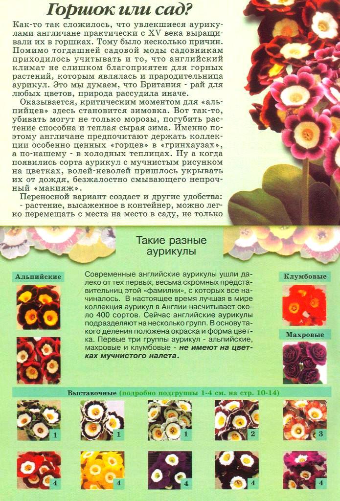 статьи о растениях из  газет и журналов - Страница 2 1710