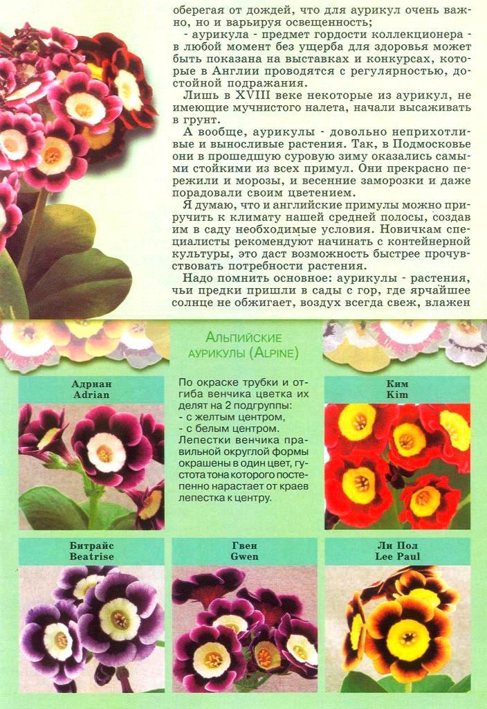 статьи о растениях из  газет и журналов - Страница 2 1810
