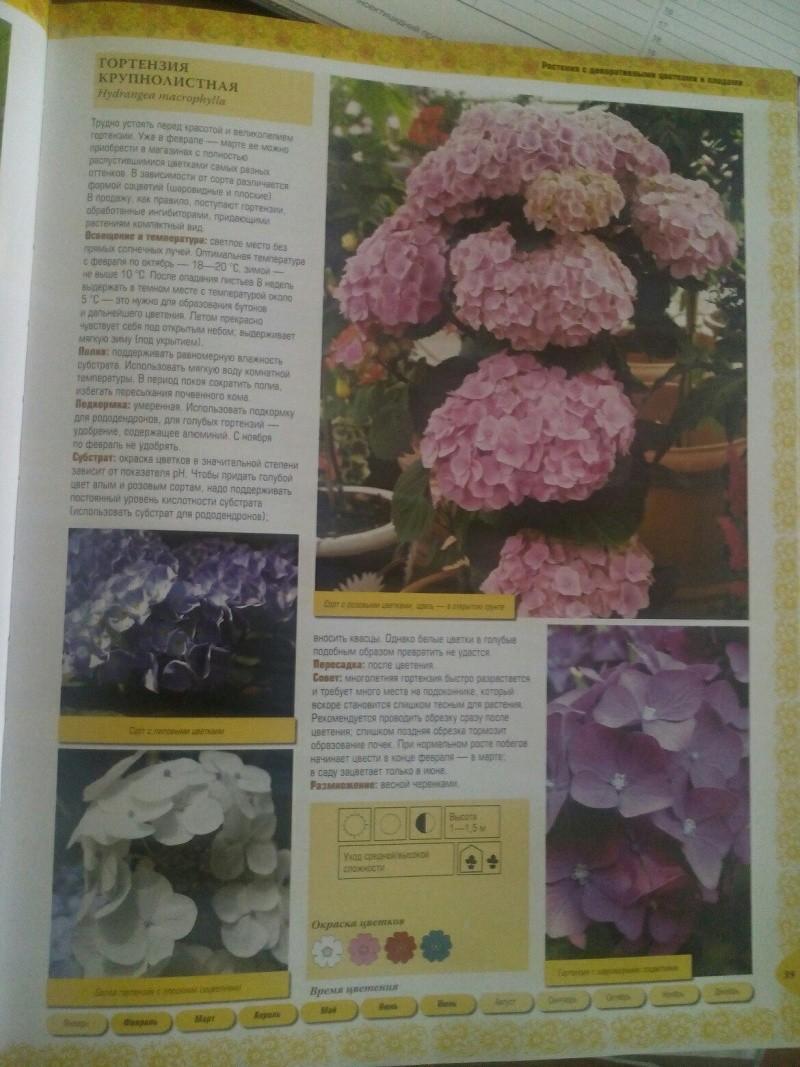 статьи о растениях из  газет и журналов - Страница 2 Sqxfnl10