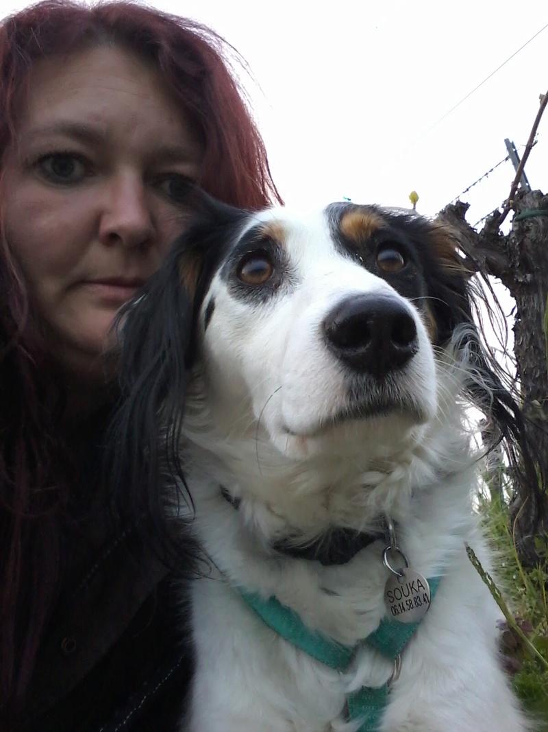 chien 39 - TAMS, M-X, taille moyenne, env. 23 kg, né 2012 (Fourrière BACKA) Pris en charge Animals Rescue - Page 3 03110