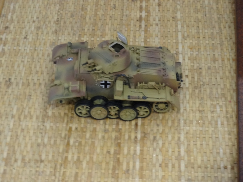panzer 1 ausf f (riccardot-34) Dsc02023
