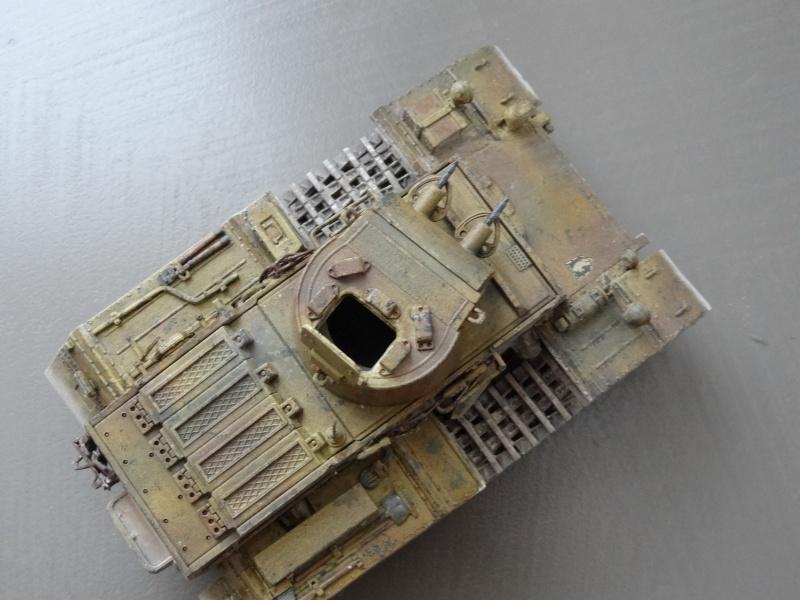 panzer 1 ausf f (riccardot-34) Dsc02031