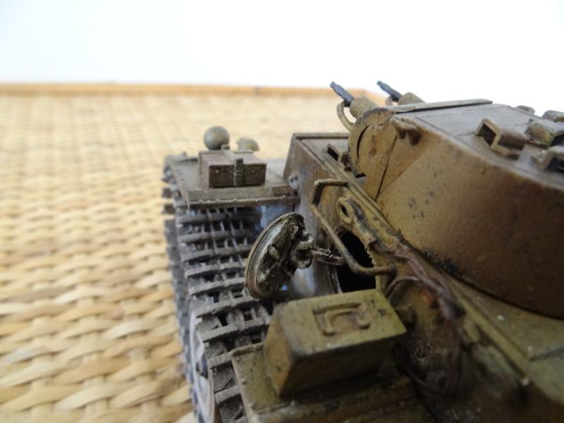 panzer 1 ausf f (riccardot-34) Dsc02035
