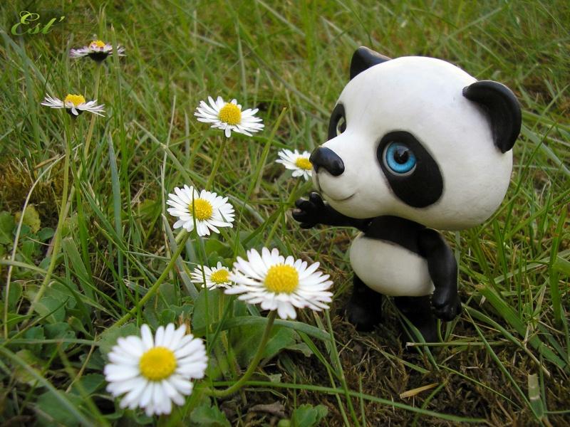 [Hayao] Petit kleptomane [page 3] Panda_12