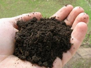 Подготовка почвы для посадки 413