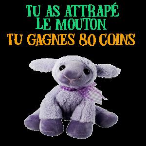 Jeu 2 - TIR DE PELUCHES Mouton10