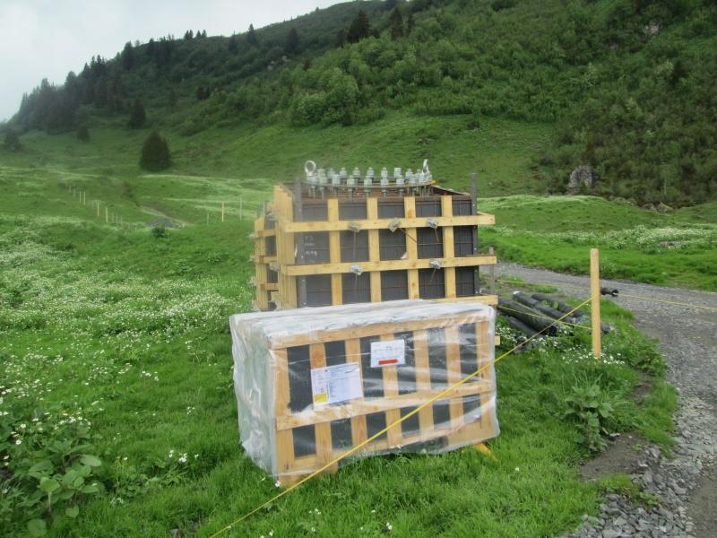 """Construction de télésièges dans le domaine """"Diablerets-Villars-Gryon (Suisse)"""" Img_1626"""