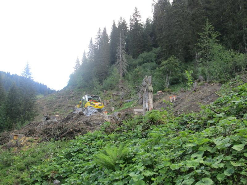 """Construction de télésièges dans le domaine """"Diablerets-Villars-Gryon (Suisse)"""" Img_1631"""