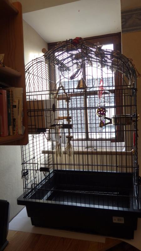 Cage a vendre  Rimg2416