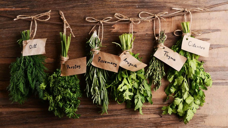 Introduction to Herbs A-Z Herbs-10
