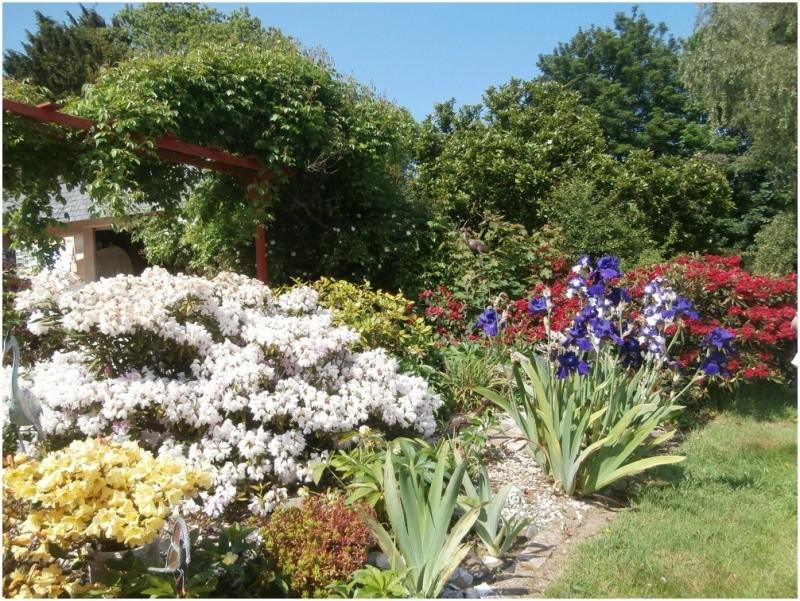 Comment faire pour bien fleurir son jardin for Fleurir son jardin