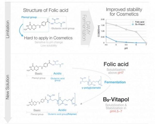 Витамин В9  (Фолиевая кислота) Vitami11