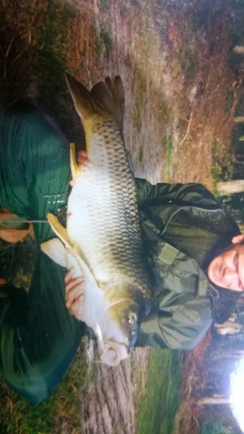 Vos plus jolis poissons (en dehors du poids) Wp_20110