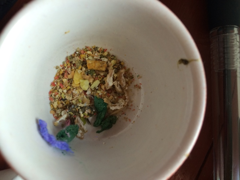 Green Poop in the Food Bowl???!!!! Mouse_10