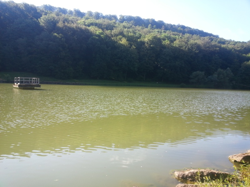 Petite session en Moselle a Rombas  20160617