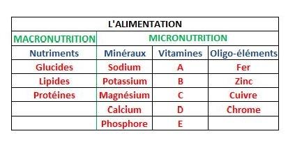 L' Ascétisme nutritionnelle 20160811