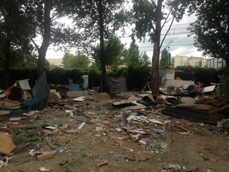 Camp de Roms de Montaudran démantelé : 50 chats sortis de l'enfer Img_4315