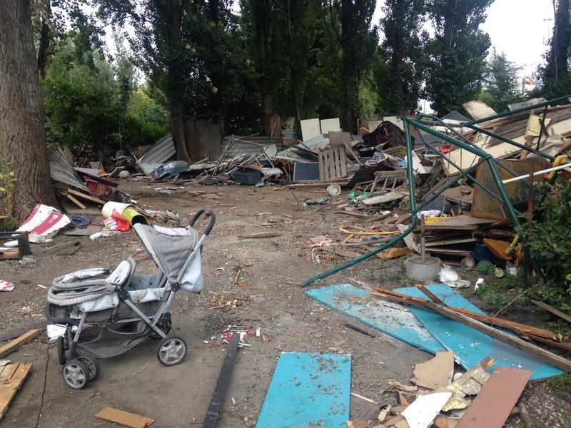 Camp de Roms de Montaudran démantelé : 50 chats sortis de l'enfer Img_4316