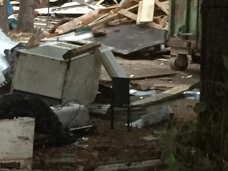 Camp de Roms de Montaudran démantelé : 50 chats sortis de l'enfer Img_9619