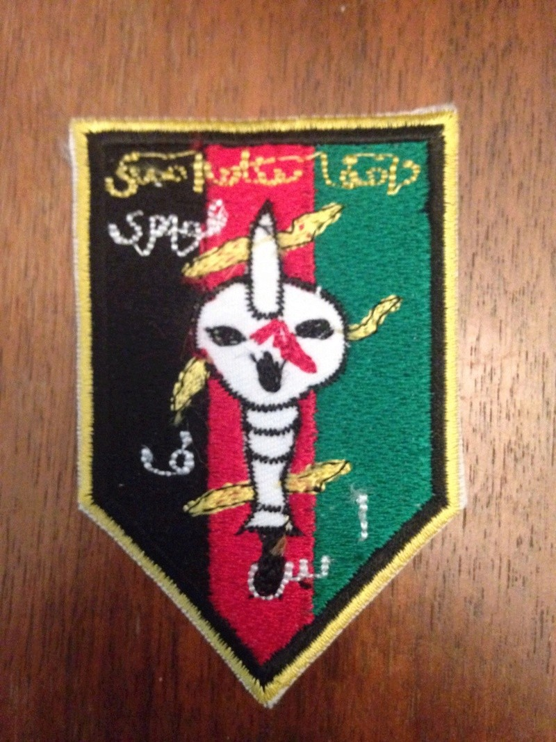ASF Skull Patch  Image46