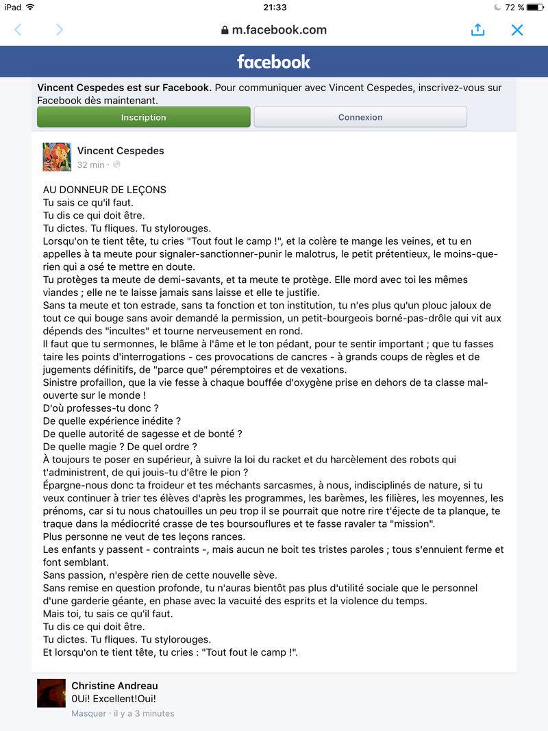 """Vincent Cespedes : """"L'école dévitalise les enfants de leur envie de connaître, de lire et d'écrire."""" et autres joyeusetés... (VousNousIls) - Page 5 Image349"""