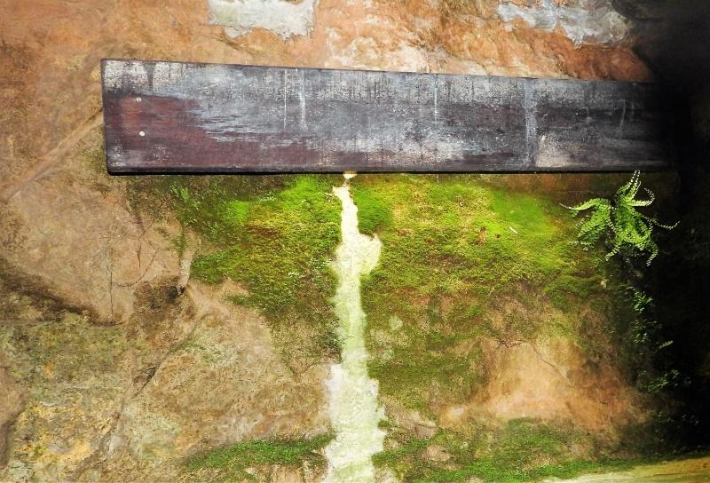 Une balade en sud Aveyron Dscn3312
