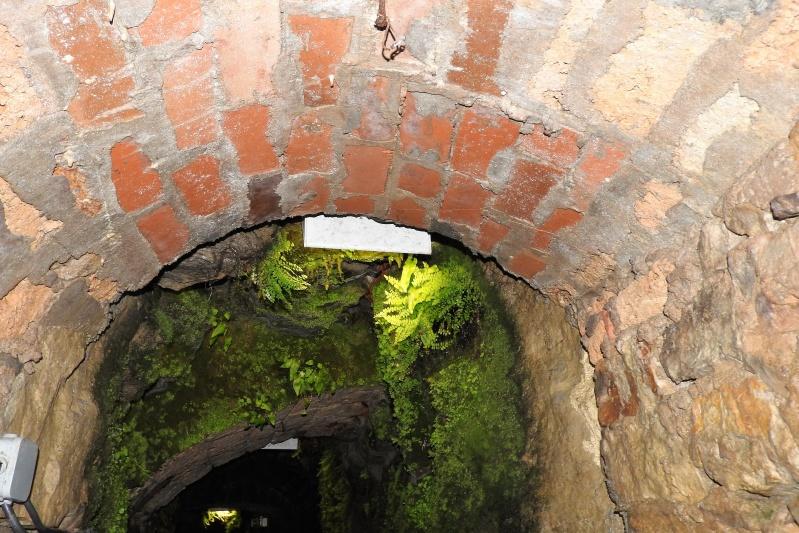 Une balade en sud Aveyron Dscn3325